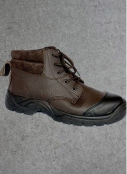 BOTIN NORTH FOX